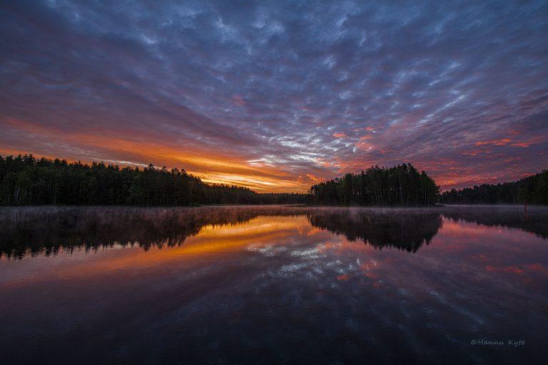 Vasikkasaari, Kallavesi